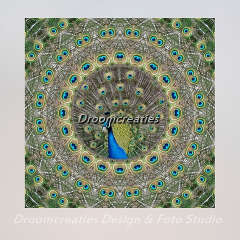 mandala_design_peacock